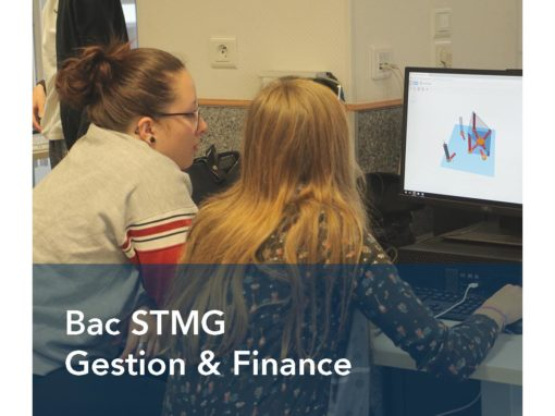 Bac STMG Gestion Finance