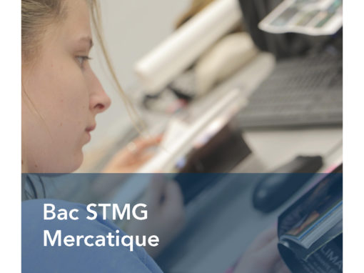 Bac STMG Mercatique